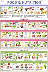 Food  U0026 Nutrition Charts  Size  70 X 100 Cm  Rs 120   Piece