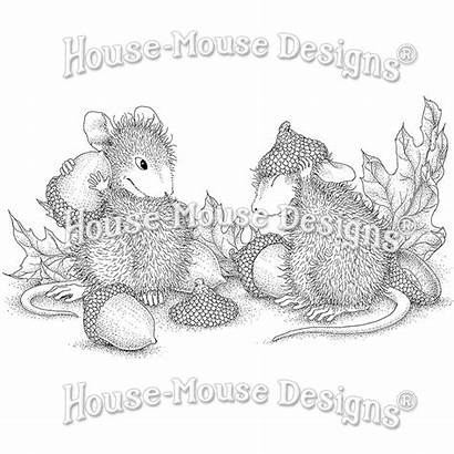 Stamp Rubber Mouse Stamps Acorn Cap Stampendous