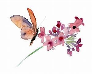 64 best images about Watercolour Butterflies on Pinterest ...