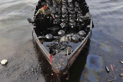 mass extinction   ocean  marine life  danger