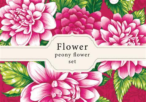peony flower designs illustrations  creative market