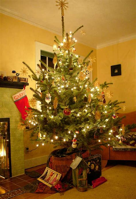 top 5 christmas trees for small spaces the san diego