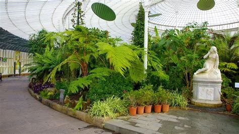 Botanischer Garten Glasgow by Botanic Gardens In Glasgow Expedia De