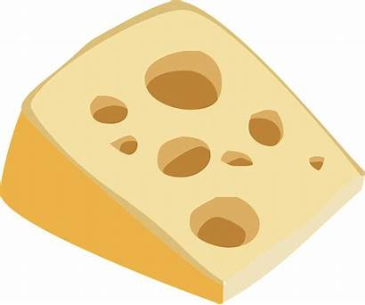 Cheese Swiss Clipart Stinky Queso Accident Causation
