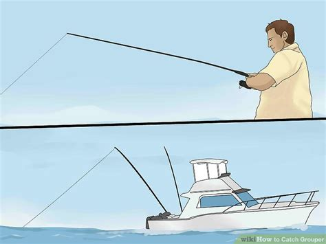 grouper catch wikihow