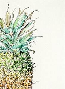 Pip Boydell illustrations | Things | Pinterest ...