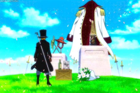 One piece wallpapers 4k hd for desktop, iphone, pc, laptop, computer, android phone, smartphone, imac, macbook, tablet, mobile device. whitebeard gifs | Tumblr
