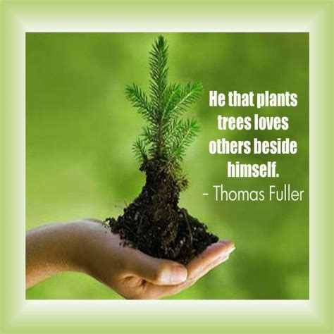 happy world environment day  wishes quotes sayings