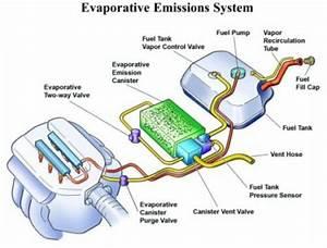 Evaporative Emission Control System  Evap