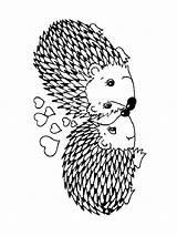 Coloring Hedge Igel Hedgehog Animals Ausmalbilder Ricci Ausmalbild Laub Template Malvorlagen Ausdrucken Kostenlos Zum Coppia Innamorata sketch template