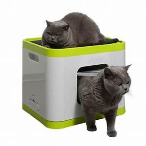 chat hygiene maison