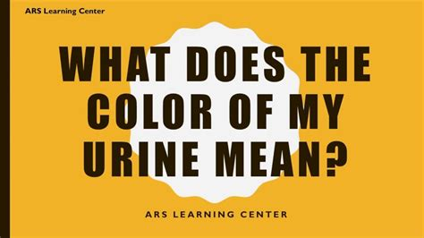 what does the color of urine what does the color of my urine