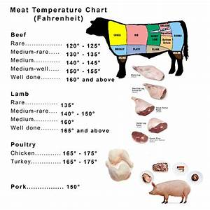 Great Homemade Recipes  Meat Temperature Chart  Fahrenheit