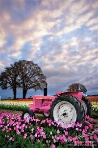 John Deere In Pink Pictures  Photos  And Images For