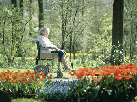 gardens may be therapeutic for dementia patients smart