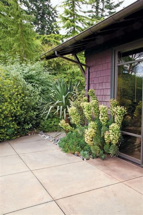windcliff nursery 17 images about dan hinkley s windcliff garden on pinterest gardens beautiful homes and new