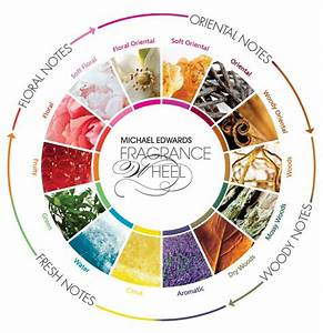 Scent Mapping  Diagrams And Aroma Wheels