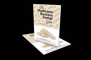 South African Gourmet Mushroom Academy