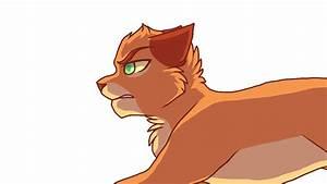 Running Cat Animated Gif