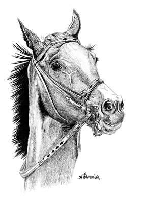horse head drawings fine art america
