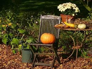 Garten Im Oktober : der garten im oktober fit f r den winter myhammer magazin ~ Lizthompson.info Haus und Dekorationen