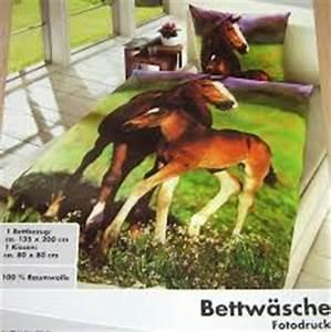 Pferde Bettwäsche Baumwolle : fotodruck bettw sche pferd fohlen 135 x 200 cm baumwolle pferde foto motiv neu ebay ~ Markanthonyermac.com Haus und Dekorationen