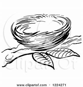 Tree With Nest Coloring Page Coloring Pages