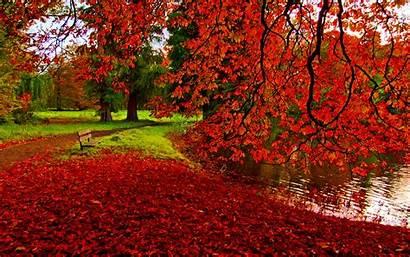 Fall Scenery Wallpapers Pixelstalk