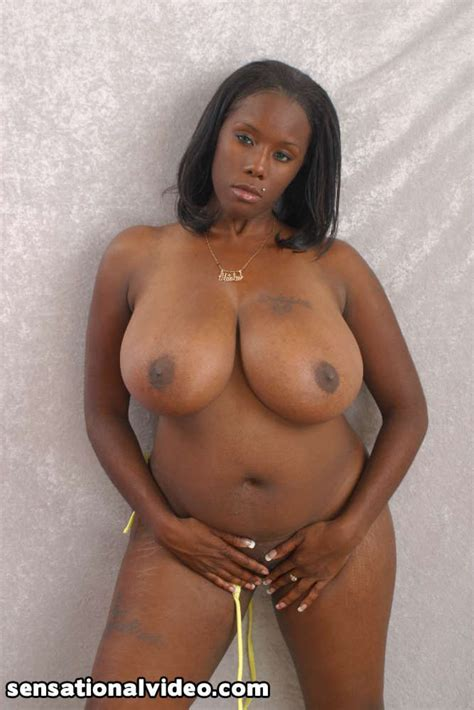 Chubby Black Lesbian Honeys Diva And Ms Panther Get Naked And Play With Their Big Tits