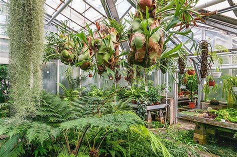 Botanischer Garten Bayreuth by Botanischer Garten Gie 223 En Fotos Botanischer Garten