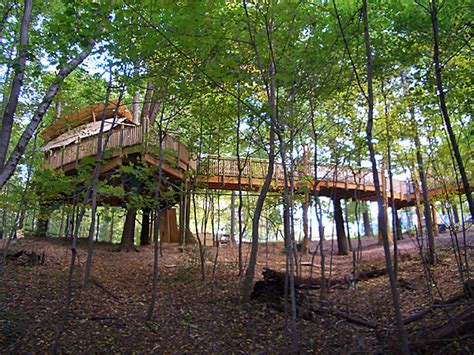 mt airy forest park the treehouse guys llc