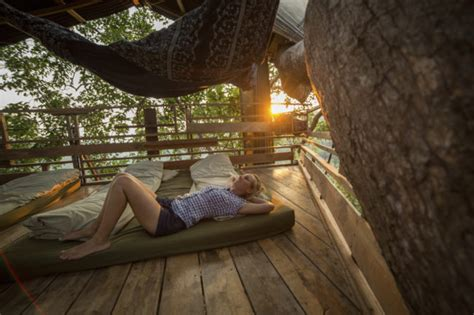 treehouses arent   kids zing blog  quicken