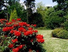 Holzasche Im Garten Verwenden : abdeckvlies im garten richtig verwenden ~ Markanthonyermac.com Haus und Dekorationen