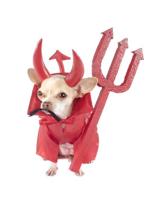 devil    details avoid pitfalls