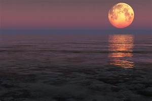 Omnama Il Portale per la Tua Crescita Personale Come Sfruttare Il Potere della Luna Piena Per