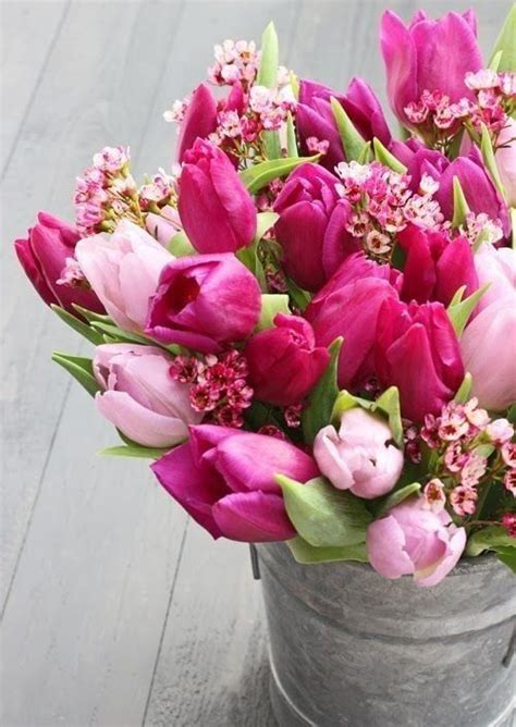 Productos Flores bonitas Flores tulipanes Flores de