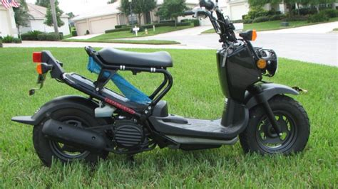 The History And Evolution Of The Honda Ruckus