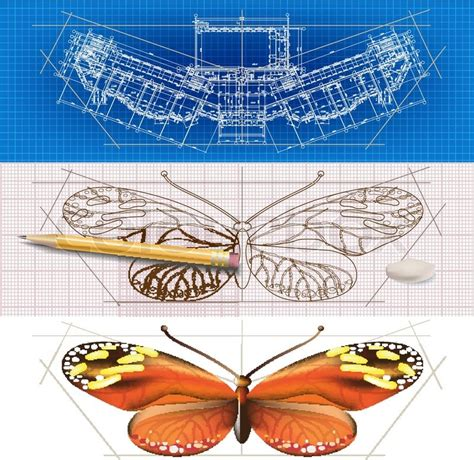 creative architectural banners   butterfly stock