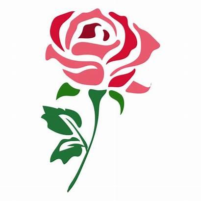 Rose Icon Flower Svg Background Transparent Vector