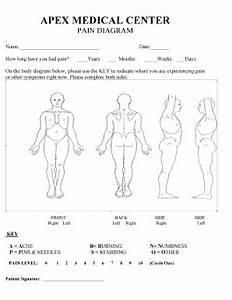 Diagram Of Torso Pain : fillable pain diagram body templates to create in pdf ~ A.2002-acura-tl-radio.info Haus und Dekorationen