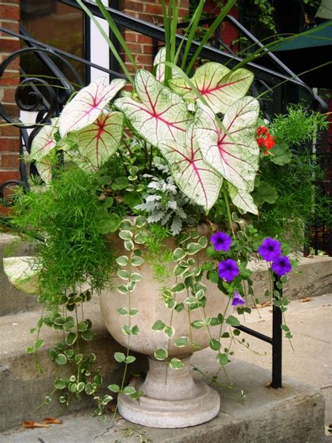 potted plant arrangements 24 creative garden container ideas with pictures flower arrangements flower and gardens