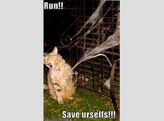 Pick Me! » Run!! Save Urselfs!!!