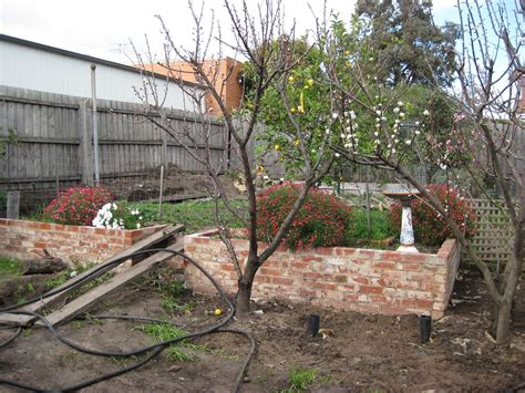 revisiting  child dog friendly  garden small