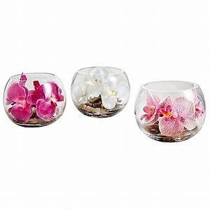 Orchideen Im Glas : redirecting to artikel deko trends deko orchidee im glas ~ A.2002-acura-tl-radio.info Haus und Dekorationen