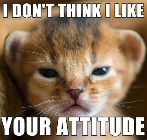 Attitude Meme - pinterest the world s catalog of ideas