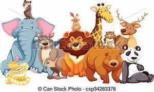 Salvaje, vida, animales, juntos, ilustración ilustración ...