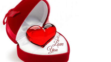 Love Photo Download, Love Hd Wallpapers, Free Wallpaper Downloads, Love Hd Pictures, I Love You