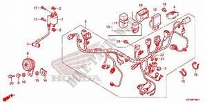 Wiring Diagram Honda Ex5 Dream