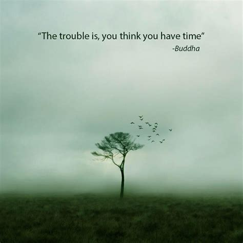 buddha quotes collected boing boing