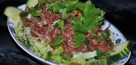 cuisine thailandaise salade de boeuf cru pimentée 8 80 mille elephants